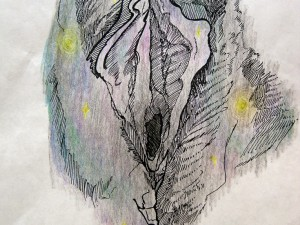 hipster-space-nebula-vulva