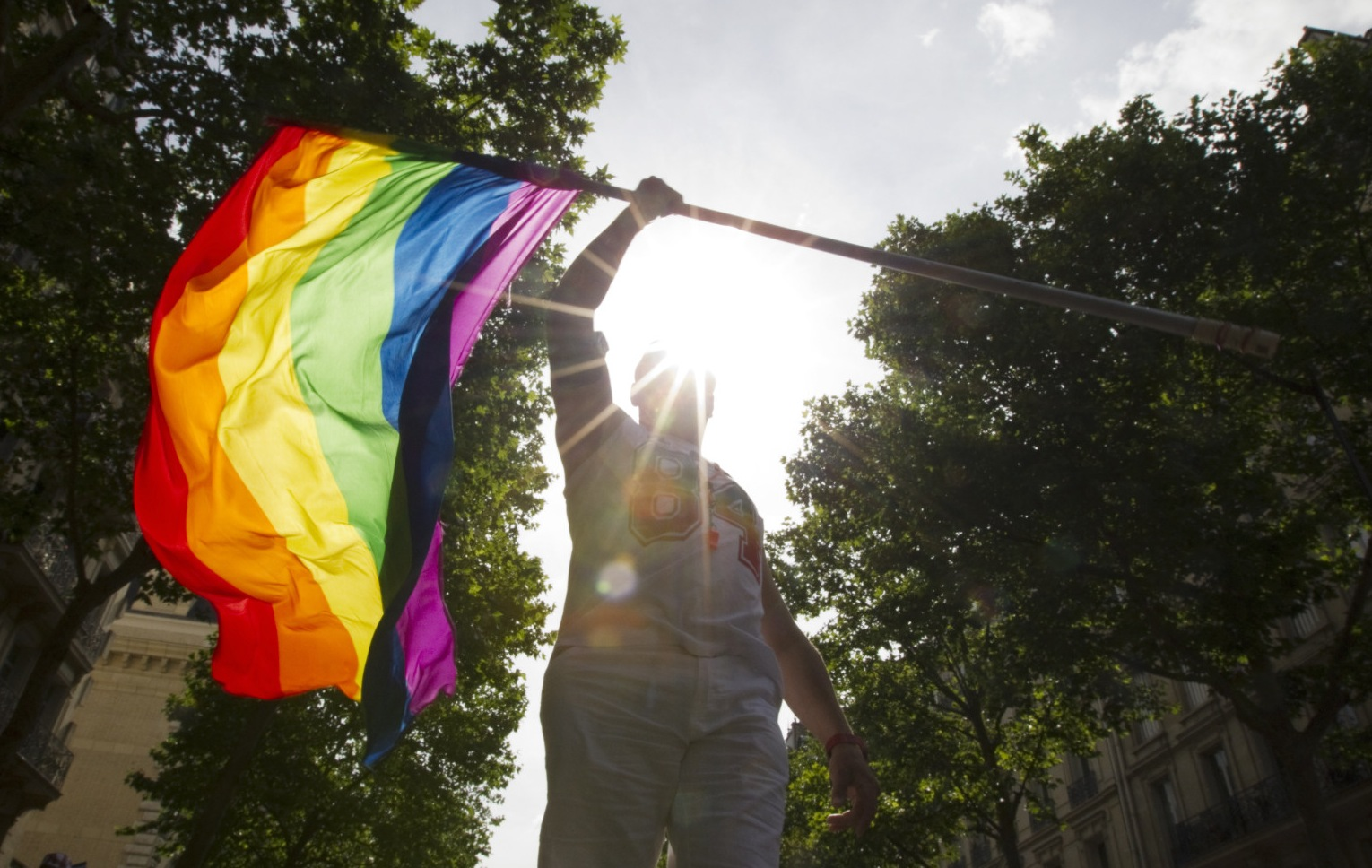 A participant attends the first Gay Pride march (Marche des Fiertes) since a French law permitting gay and lesbian marriage was passed in Paris