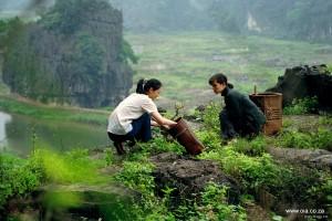 filles du botaniste