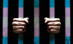 transprison-496x300